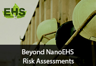 Beyond NanoEHS Risk Assessments - Leading at the Interface of Science and Business